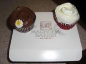 Cupcakes deliciosos en Magnolia Bakery
